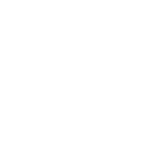 WordPress logotype wmark white